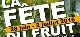2ème édition de la FETE DU FRUIT A PAIN