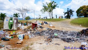 Ces actes délictueux détruisent notre environnement !