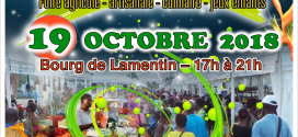 Festi'Marché – Octobre – Novembre 2018