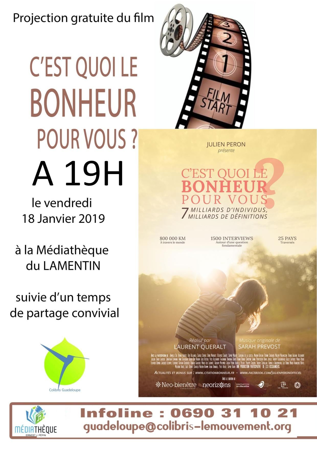 PROJECTION18JANVIER-page-001